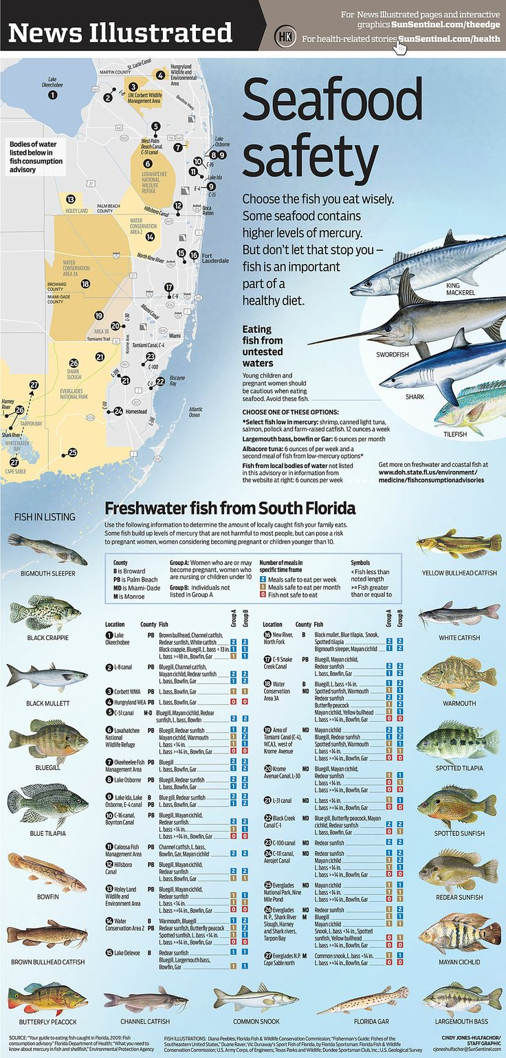 17 best images about seafood info on pinterest for What fish is high in mercury