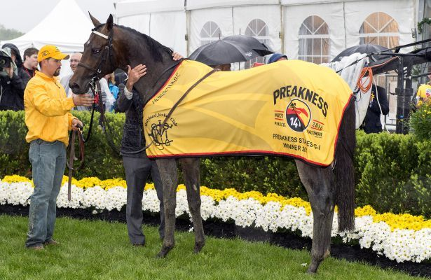 Preakness Stakes 2016 winner Exaggerator