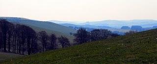 Spring 2010 near Newtown, Powys, Wales