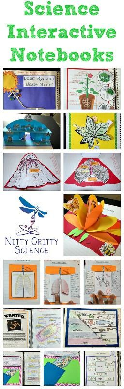 Science Interactive Notebooks are a great tool for students to process and understand science concepts in an engaging and creative way.