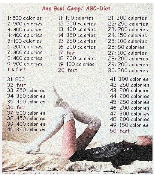 The calories per day needs to go up but i love the idea of taking a cople days out of the week/month to fast