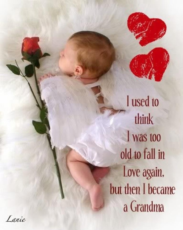 This is so true.  I thought I could never find this kind of love again.  I thank God each day for the gift of my grandson.