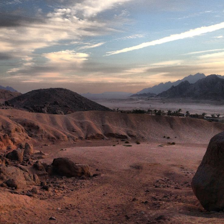 Out in the Sinai desert
