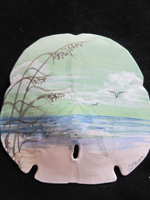 Athenas Hand-painted Sand Dollar Shop | hand-painted-sand-dollar-shop ...