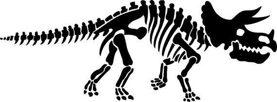 25 Best Ideas About Dinosaur Bones On Pinterest