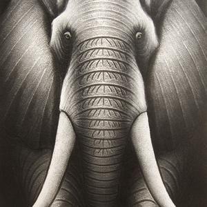 Lukisan Modern Minimalis Gajah Silver (80cmX60cm)