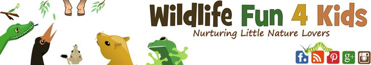 Wildlife Fun 4 Kids (Lots of printables, crafts, activities, etc. for kids' learning about nature)