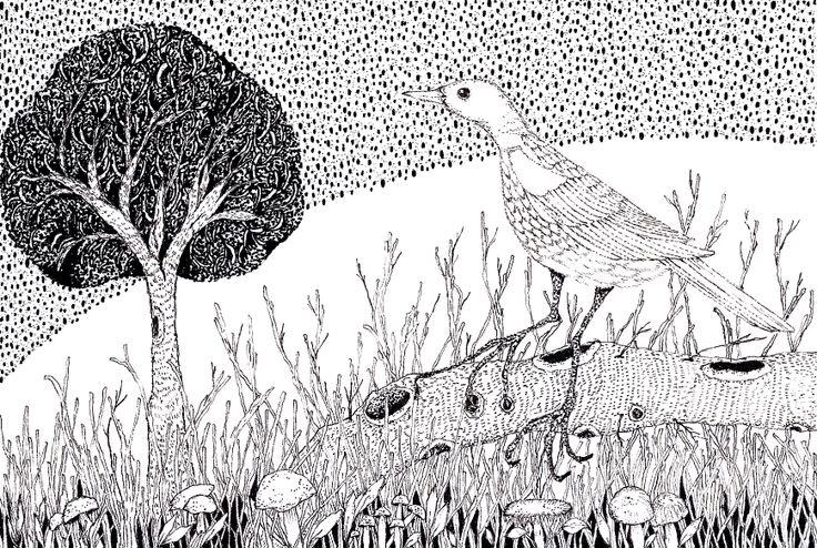 Bird in the Wild #illustration #linedrawing #blackandwhite