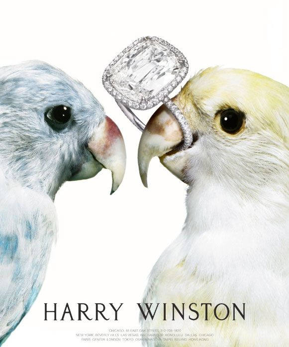 """Shoot for Harry Winston...you are bound to land among the Tiffany's and David Yurmans!"""