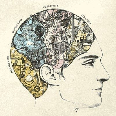 Как гармонично развивать полушария мозга? / Будьте здоровы