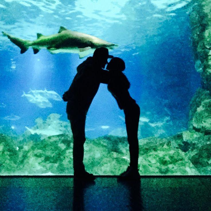 아쿠아리움 커플사진 #couple