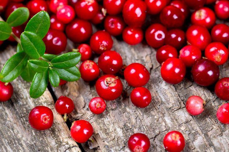Tyttebær er enkle å ha med å gjøre, og kan enkelt fryses. I tillegg er de sunne! Oppskrift på deilig tyttebærsyltetøy.