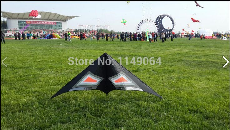 ==> [Free Shipping] Buy Best free shipping high quality rocking dual line stunt kites sports ripstop nylon fabric kite kite accessories flying bird kites Online with LOWEST Price | 2007479815