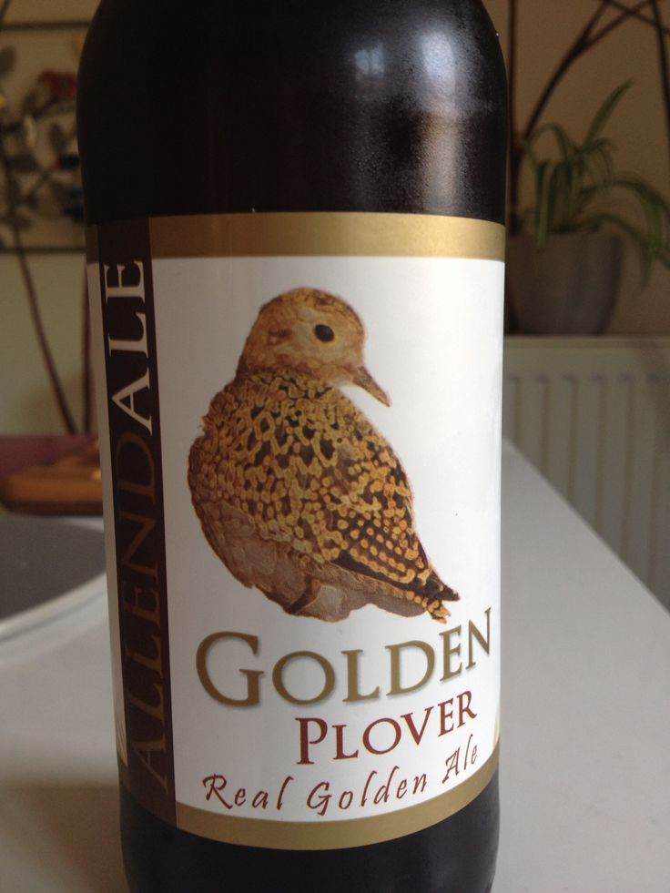 Allendale Golden Ale
