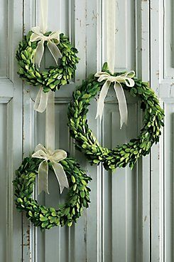Boxwood Wreath Our preserved boxwood wreaths, in three sizes, are so versatile you'll find dozens of great ways to use them. Hang them on the backs of chairs, from doors or in