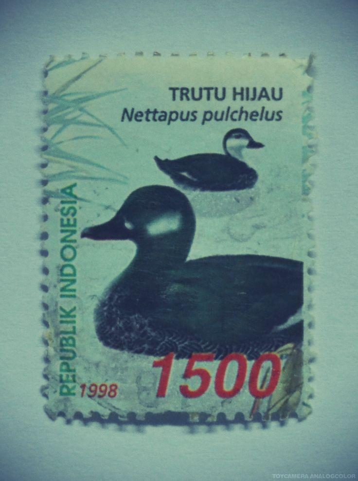 perangko Trutu Hijau tahun 1998 (Rp 1500)