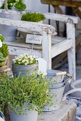 Old wooden chair with zinc pots for outside