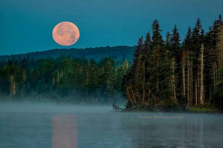 Super Moon, July 12, 2014