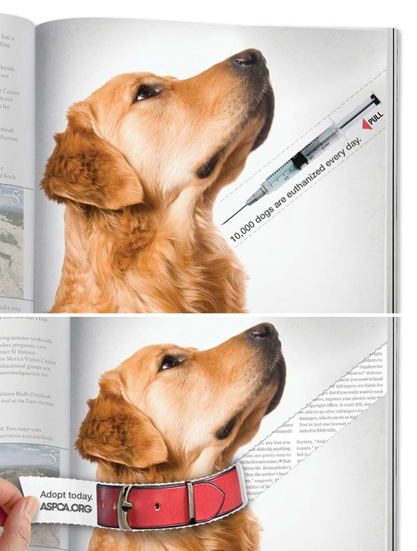 ASPCA: Dog Collar Interactive Press Ad | Advertising School: School of Visual Arts, New York, USA