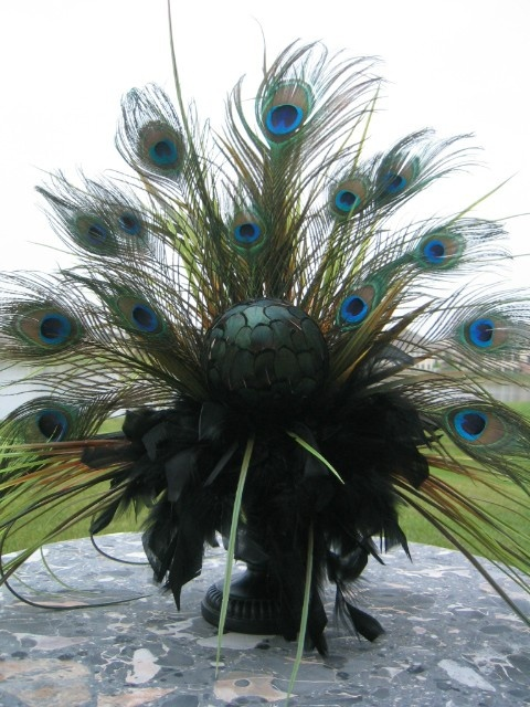Peacock feather arrangement different so I like it!