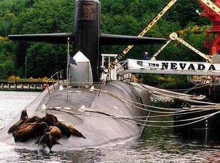 """THE ORIGINAL SEAL TEAM by the Navy Fund: """"The ballistic missile submarine USS Nevada was attacked by a rogue seal team while docked at Bangor, Washington. According to Navy officials, this was not a planned training exercise.   """"The perpetrators made their escape back into the water, leaving from the ship's bow. None could be identified, as they were in their SEAL-issued wet suits and underwater gear."""""""