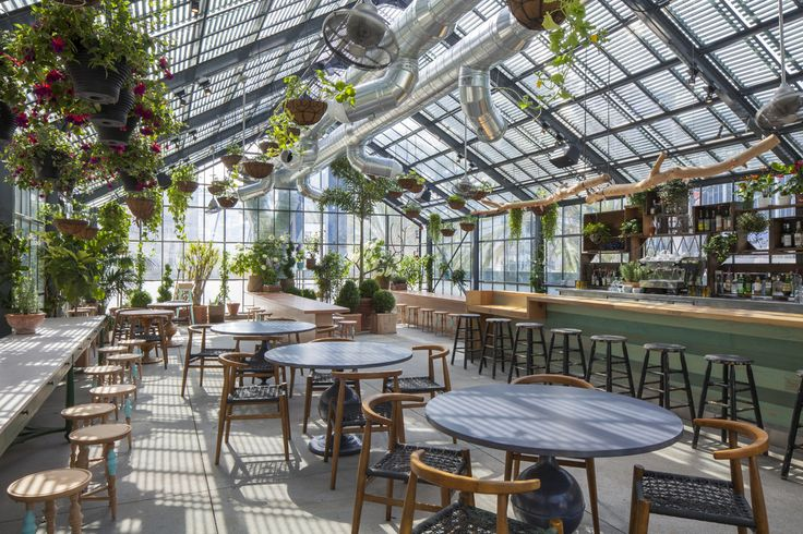 Located on the second-floor roof deck of The Line Hotel in Los Angeles, the 1,700 square-foot greenhouse of a restaurant is impressive even for LA's rooftop scene. Designed by Venice based Sean Knibb of Knibb Design the greenhouse's lofty ceilings are adorned with hanging ivy, ferns, and cyclamens.