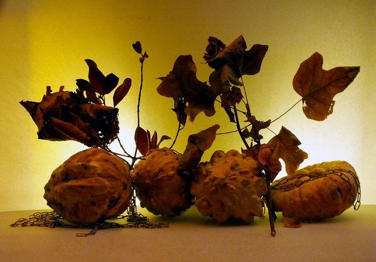 Zucche e foglie morte 3. by Giancarbon.deviantart.com on @DeviantArt
