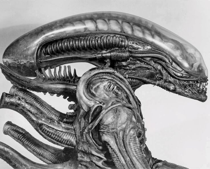 The original Alien suit at a 2011 Giger expo in Frankfurt. Description from avp.wikia.com. I searched for this on bing.com/images
