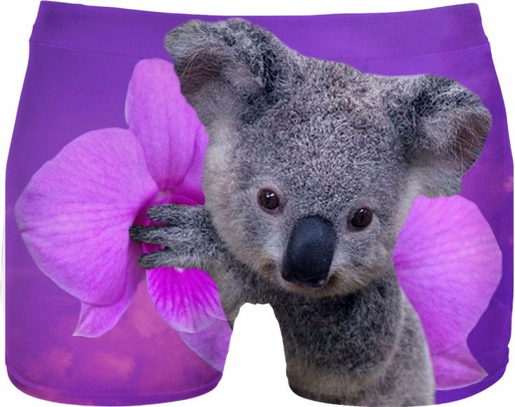 Check out my new product https://www.rageon.com/products/koala-and-orchids-men-underwear-1?aff=BWeX on RageOn!