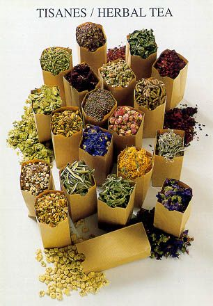 Various herbs are a must for tea time! So many healthy properties are carried within natures gifts!