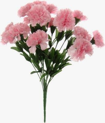 Valentines Day Flowers Fast Delivery