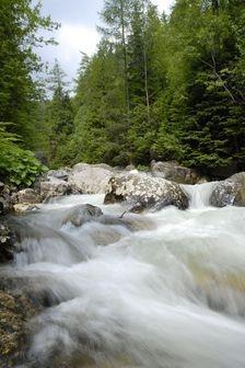 Potok Biela Voda & Belianske Tatry