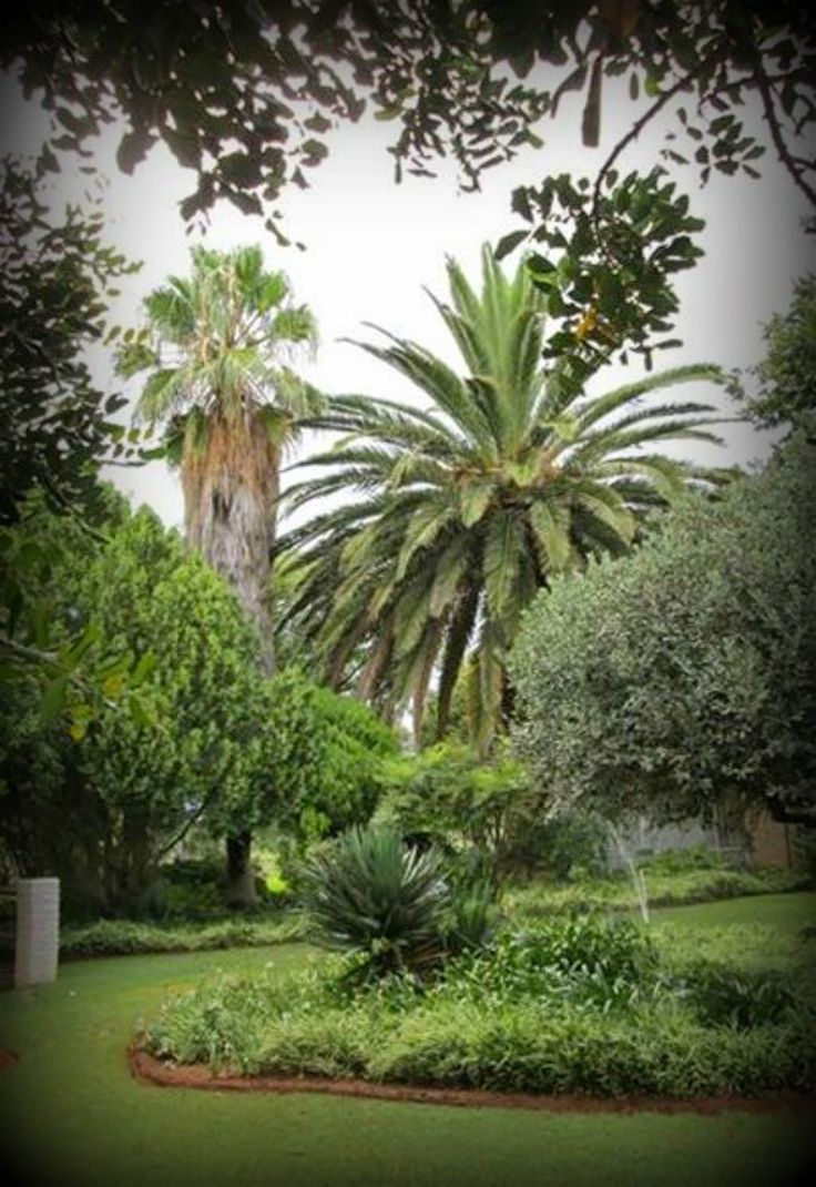 Kameel Rust and Vrede Oude Huize Yard: Search results for Kameel