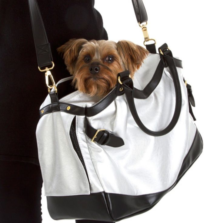 Designer Pet Products Scarlett Pet Carrier - Dog Carriers at Hayneedle