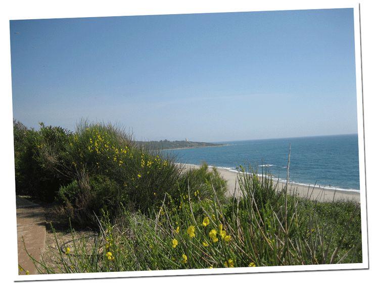 Playa de La Alcaidesa y Faro