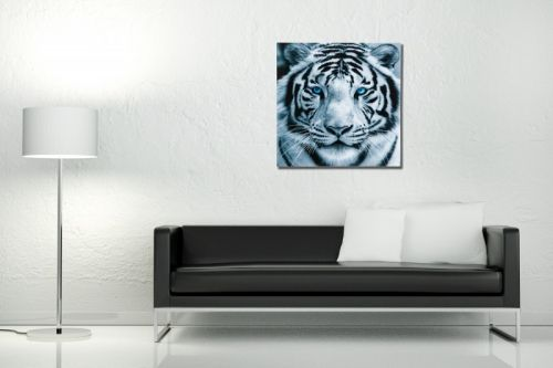 """Piękny, szklany obraz przedstawiający naturę. Okazały biały tygrys na pewno świetnie odnajdzie się we wnętrzach w minimalistycznym stylu. Jasna kolorystyka obrazu odnajdzie się w każdym wnętrzu a niebieskie oczy """"kociaka"""" wpadną w oko niejednej osobie. Obraz jest również dobrym pomysłem na prezent."""