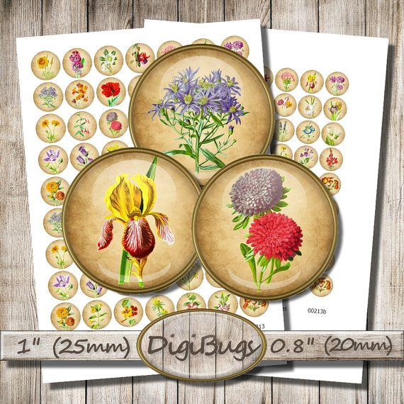 Garden Flowers, Digital Collage Sheet, 1 inch, 0.8 inch Circles, Floral Jewelry Images, Printable Flowers, DigiBugs, Instant Download, a3