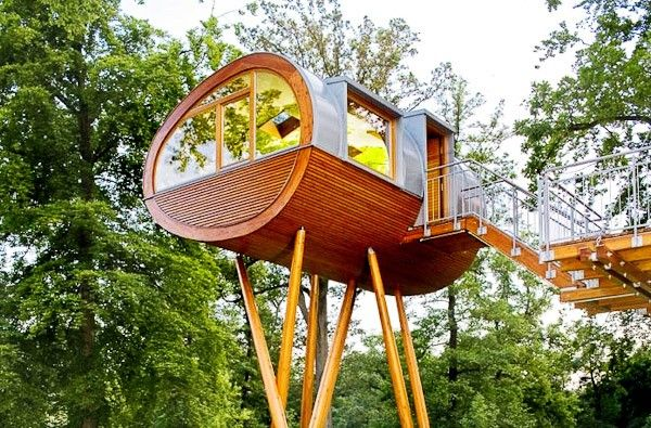 Curious Places: Baumraum's World of Living Tree House (Rheinau-Linx/ Germany)