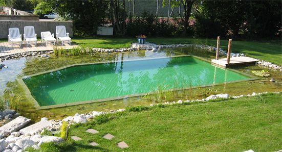 Piscine écologique : l'intérêt d'une baignade au naturel | Bio à la une
