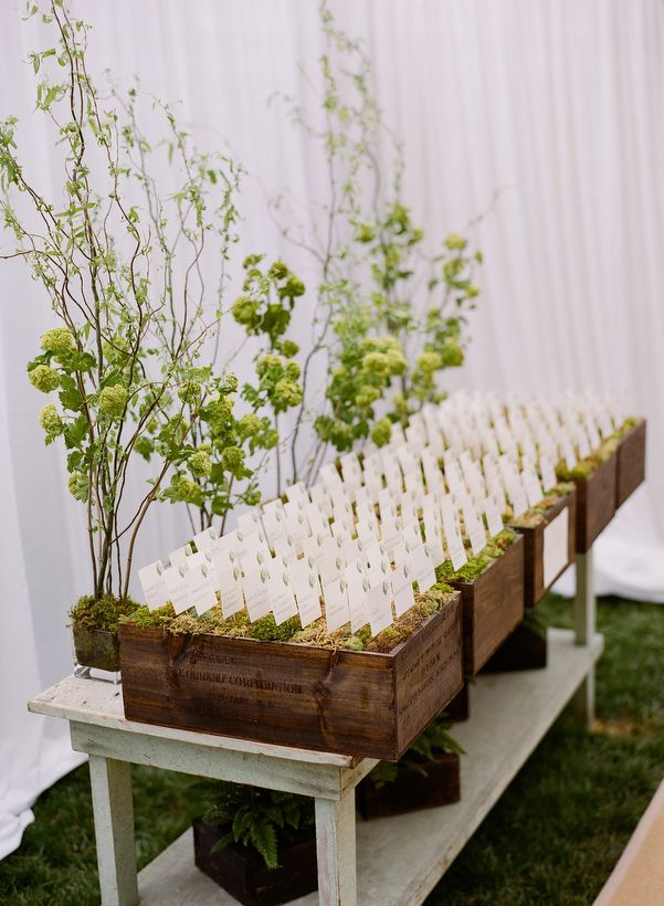 Escort card station, photo by Kate Murphy.