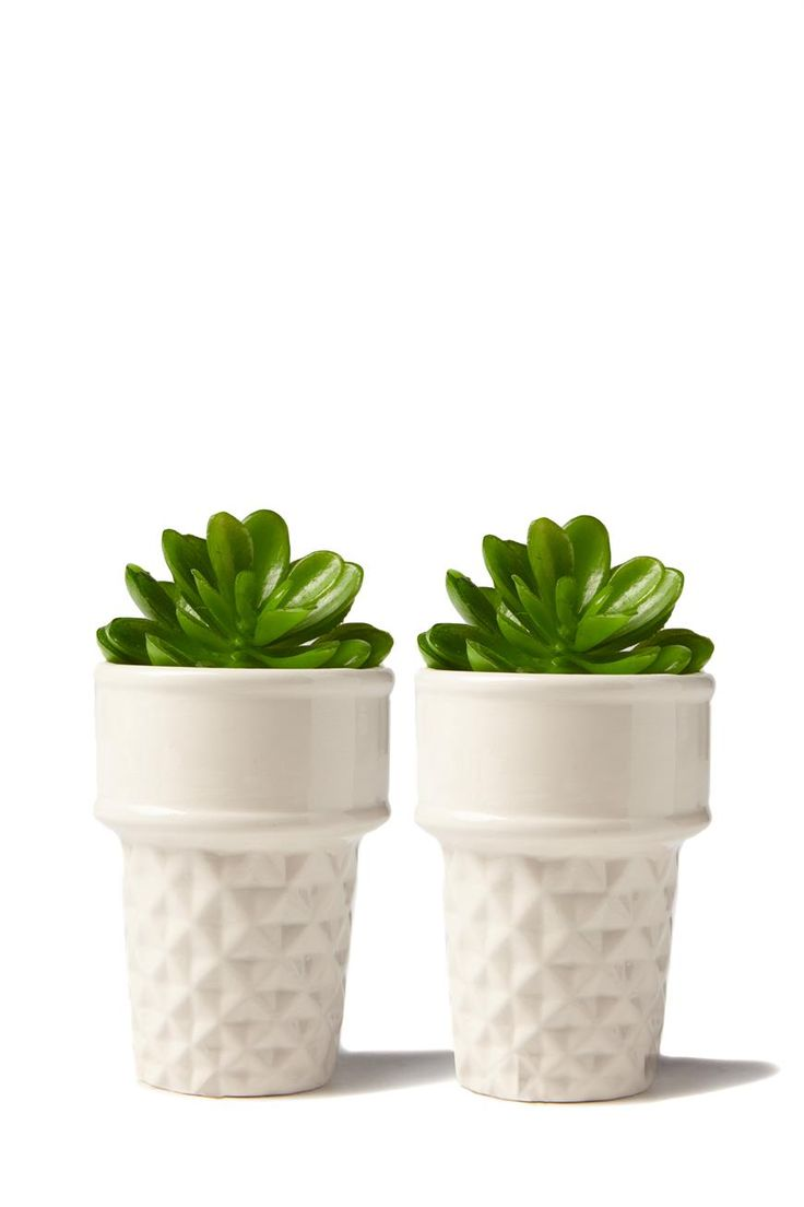 Spruce up your desk space with these guaranteed kill-proof plants! <br> Each set includes two ceramic ice cream cone planters and fake plants. <br> Plants are removable so you can fill with your favourite live greenery! <br> Ice cream cone planter measures 10cmH x 7cmW <br/>