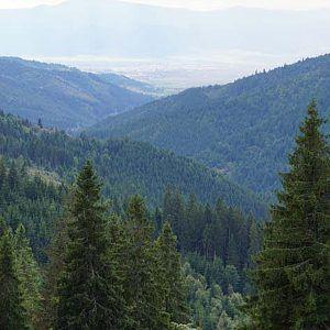 Resting place – Bucsin Peak / Transylvania / Romania | Cookbook Travels