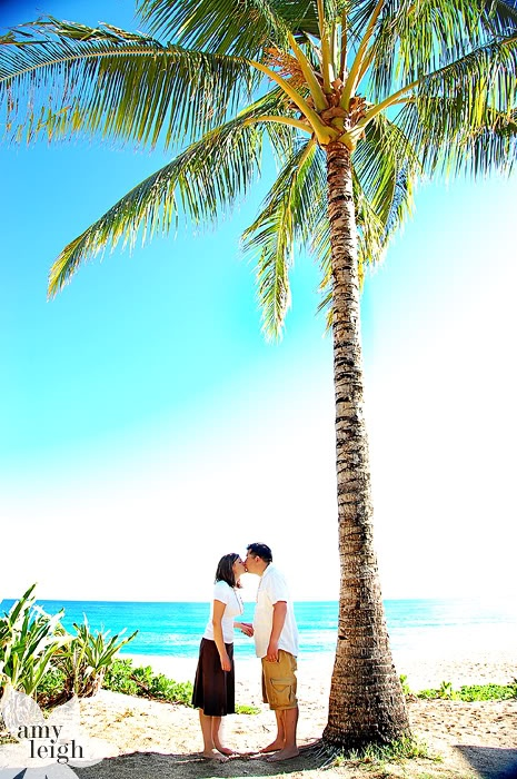 Tunnels beach, Kauai. Kiss under the palm tree.: Kiss