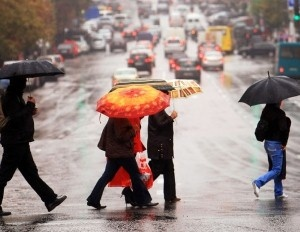 Walkable Seattle is in growing demand | ZipRealty Blog