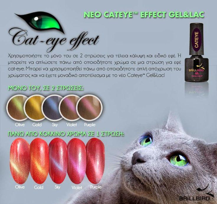 POINTOFBEAUTY.GR - Brillbird Athens exclusive sales point: Νεα σειρα Gel&Lac... cateye effect!!!