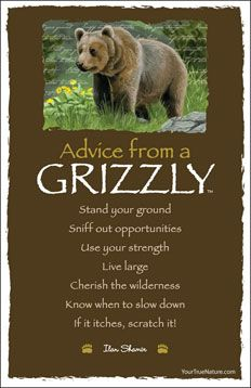 Advice From A Grizzly Postcard Spirit Animals Totems