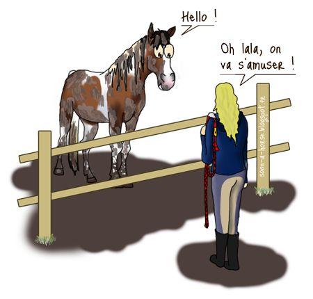 Nettoyer la boue du cheval, quelle galère !!  http://soon-a-horse.blogspot.fr/2014/12/oh-la-gadou-la-gadou-la-gadou.html