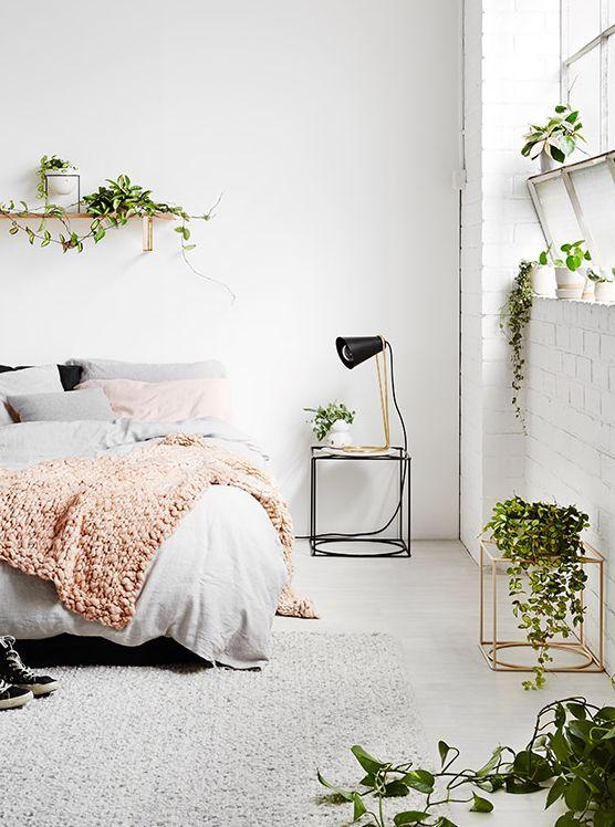 Quer mudar o ambiente, mas não sabe como? Uma dica simples, fácil e barata é utilizar as plantas na decoração. Elas podem ser usadas nos mais diversos locais, e deixam tudo mais bonito.