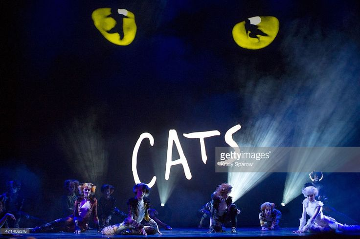 London cast members from the musical production of 'Cats' perform during a press presentation of the show, at the Mogador Theatre on April 27, 2015 in Paris, France. Since its debut in 1981, the musical 'Cats' has risen as one of the most popular an longest-running stage shows in the world and will soon open in Paris on October 1, 2015.