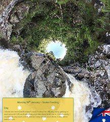 Australia Day | Mon 19th to Mon 26th Jan 2015 — Ned Martin's Dot Org